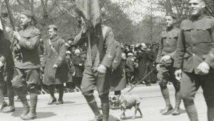 """Ο δεκανέας και ένας σκύλος λοχίας… """"Αχτύπητο"""" δίδυμο στο Δυτικό Μέτωπο"""