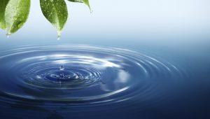 Το νερό της ζωής ως όπλο θανάτου… Η φωκική πόλη Κίρρα και η καταστροφή