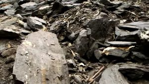 Η Λίμνη των Σκελετών: Οστά Ελλήνων στα Ιμαλάια;